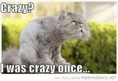 ... Crazy ...
