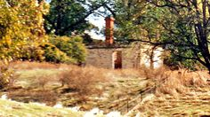 Red Hill Station NSW: Kiley's Run homestead ruins from 1848 (1988)