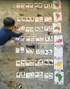 Montessori Animals and Continents Cards (English, Chinese, Korean) Continents Activities, Geography Activities, Geography For Kids, History Activities, Teaching Geography, History Education, Teaching History, Montessori Color, Montessori Science