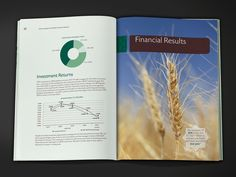 ICIEC Annual Report 2010 by Omar Reda, via Behance