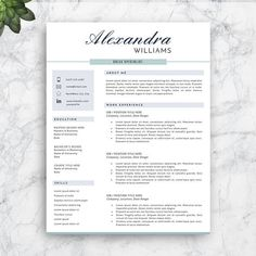 Pages Templates Resume Professional Cv Template For Word And Pages  Creative Cv Design .