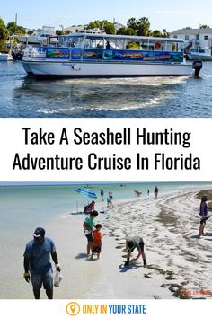 Take a scenic seashell hunting adventure cruise in Florida. It's perfect for family-friendly summer fun. You can also enjoy nature and dolphin tours! Summer Travel, Summer Fun, Dolphin Tours, Best Cruise, Boat Tours, Florida Travel, Where To Go, State Parks, Sea Shells