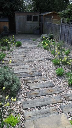 We created this Barnet garden last autumn in and when we visited this week the daffodils were looking so jolly that we thought we would share. The brief f
