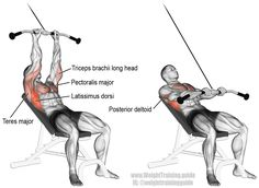 Incline straight arm pulldown. Targets your Latissimus Dorsi, while your Teres Major, Rhomboids, Levator Scapulae, lower Pectoralis Major, Pectoralis Minor, Posterior Deltoid, and the long head of your Triceps Brachii act as synergists.