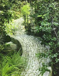 What a beautiful old cobbled path!