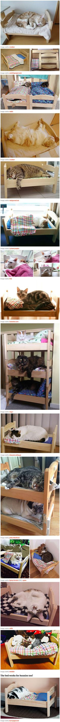 Some clever Japanese cat owners have re-purposed a simple but popular doll bed from IKEA, turning it into an adorable bed for their cats and other pets. The $20 Duktig is officially a toy bed for children's dolls, but it also seems to have become IKEA's first foray into the pet furniture market. Incidentally, the slot at either end of the bed is an excellent feature for cats – it lets them stick their tails out if they want to relax.
