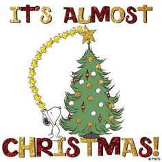 """It's almost Christmas!"", Snoopy and Woodstock."