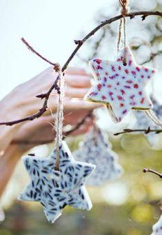 Easily make bird food in fun forms - stars bird seed diy - Christmas Crafts, Christmas Decorations, Xmas, Christmas Ornaments, Diy Tumblr, Diy For Kids, Crafts For Kids, Bird Seed Ornaments, Winter Diy
