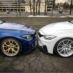 BMW F80 M3 duo blue white