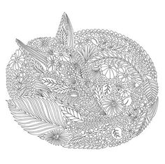 Animal Kingdom by Millie Marotta – Zen Coloring Pages