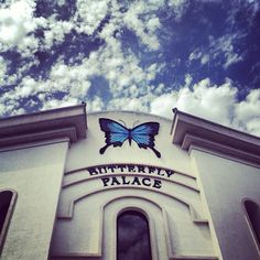 Great photo of the Butterfly Palace. Thanks for sharing @Candice Plunk! #ItsMyShow #Branson
