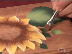 Il Decorative Painting in DVD