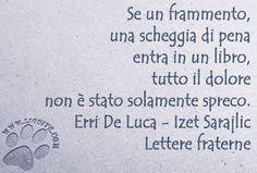 Ho solo recentemente scoperto questo libro e soprattutto l'amicizia fraterna che lega i due scrittori/poeti. Entrambe persone di rara sensibilità. Se un frammento, una scheggia di pena entra in un libro, tutto il dolore non è stato solamente spreco. Erri De Luca - Izet Sarajlic - Lettere fraterne #ErriDeLuca, #IzetSarajlic, #letterefraterne, #libro, #libri, #lettura, #dolore, #italiano,