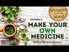 Make Your Own Medicine - YouTube Roald Dahl Day, Cough Syrup, Episode 5, Medicinal Plants, Make Your Own, Medicine, Youtube, Healing Herbs, Medical