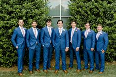 wedding party groom and groomsmen in bright blue suits with pink ties hedge wall… wedding party groom and groomsmen in bright blue suits with pink ties hedge wall charlotte summer Indigo Blue Suit, Cobalt Blue Suit, Bright Blue Suit, Dark Blue Suit, Blue Suits, Blush Groomsmen, Blue Groomsmen Suits, Groom And Groomsmen, Groom Suits