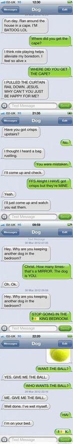 Funny doggy texts