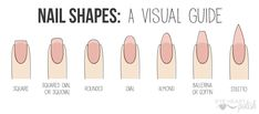 A visual guide to Nail Shapes (including descriptions, strength, and which shape is most flattering for different types of hands/nail beds)