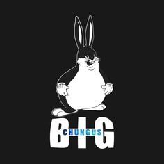 11 Best Fat Bunny Images In 2017 Hilarious Fat Bunny Jokes