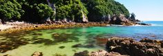 The secluded coves & white sand beaches of The Coromandel are picture-perfect.