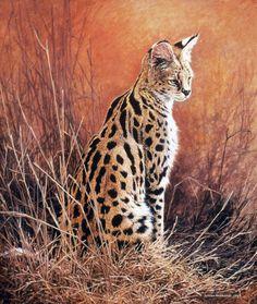 Serval portrait - 1995 Johan Hoekstra Wildlife Art