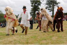 10 Best Widecombe fair images in 2015 | Dartmoor, Devon, England