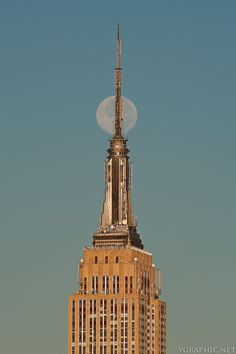NYC. Empire State Building (What came to my mind?:  In vitro fertilization...) // 500px by Yosuke Kobayashi