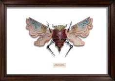 The Reference Moth • Litterbugs by Mark Oliver (he makes these beauties from trash! Fantastic!)