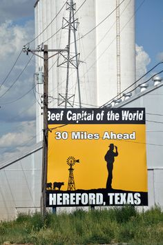 """Hereford, TX My mom's hometown.my grandaddy used to tell me the cattle pens """"smell like money honey"""" Western Photography, Texas Things, Loving Texas, Texas Pride, Home On The Range, Texas History, West Texas, Texas Travel, Yellow"""