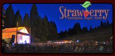 GROVELAND, CA - August 29 - September 2 - Strawberry Music Festival 3 HRS MAPQUEST PAST STOCKTEN