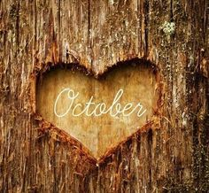 OCTOBER Brings A Positive Mood Change!