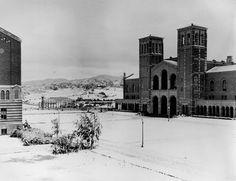 Experiencing Los Angeles: Snowy Day in El Lay 1/15/1932