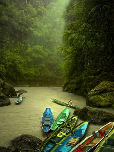Philippines ~ river boats