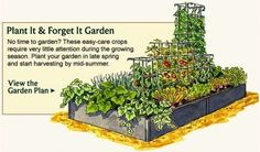 Just what I need - plant it and forget it, lol Vegetable Garden Planner - Layout, Design, Plans for Small Home Gardens
