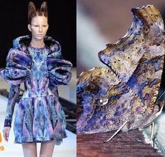 insect inspired fashion