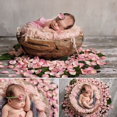 Inspiration For New Born Baby Photography : Newborn Photography Seattle Eden Bao rustic wood