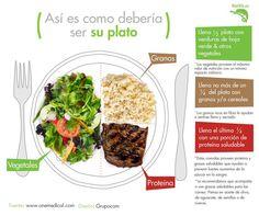 así es como debería ser tu plato