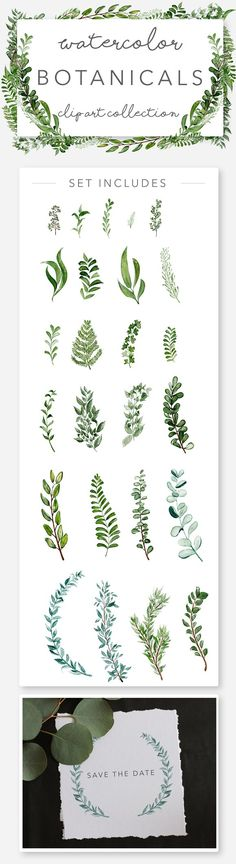 Wild Watercolor Greenery Clipart by Wooly Pronto on @creativemarket, wedding invitation art, watercolor wreaths, botanicals, wild greens, clip art set, design your own invitations, diy cards, diy graphic design