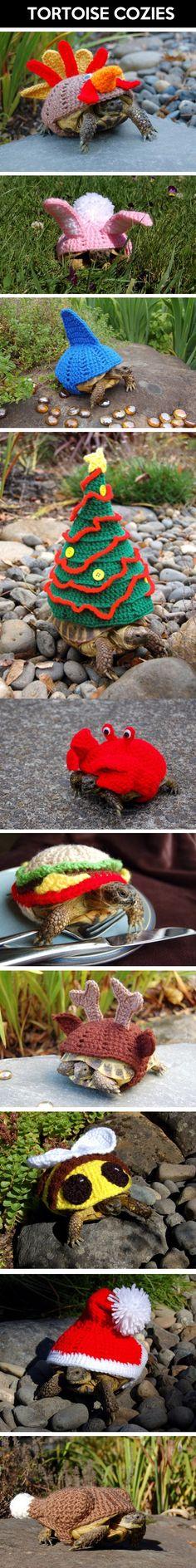 Tortoise Cozies. I cracked up when i saw the tortoise burger cozie!