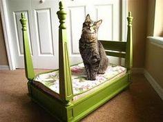 Reutilizando.....cama fashion para seu gato