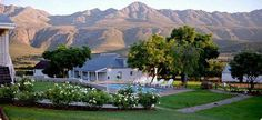 """Eco-Tourism - Oudtshoorn, the """"ostrich capital of the world"""", is a town in the Western Cape province of South Africa."""