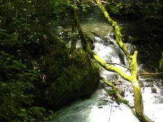 Kalamas river Epirus
