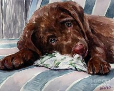 My Rope Toy Painting  - Molly Poole Watercolor