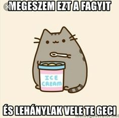 Thinking ofthe meaning of life funny cat videos - pusheen Funny Shit, Funny Cat Memes, Funny Fails, Hilarious, Funny Videos Clean, Funny Cat Videos, Pusheen Cat, Grumpy Cat, Meaning Of Life
