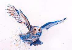 Owl Flying Bird of Prey Watercolour Large Original Animal PAINTING A3 signed ART