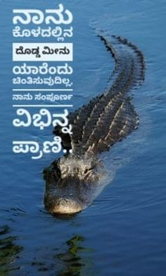 Kannada Quote Motivational, Water, Quotes, House, Outdoor, Gripe Water, Quotations, Outdoors, Haus