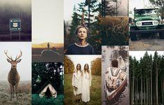 Explore Fall & Fall Feels