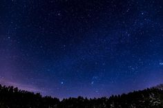 stars, galaxy, space, astronomy, night, dark, evening, trees, forest, woods, nature, sky, silhouette, shadows