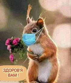 Good Morning Flowers, Good Morning Gif, Good Morning Photos, Super Cute Animals, Cute Baby Animals, Funny Animals, Beautiful Love Pictures, Animals Beautiful, Good Morning Quotes Friendship
