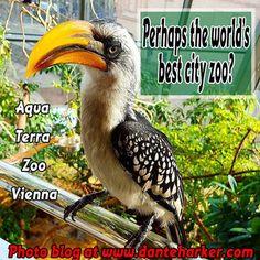 Aqua Terra Zoo in Vienna - amazing place, photo blog by Dante Harker