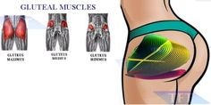 5 Exercises To Work Your Glutes – FITNESS
